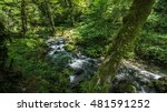 river in the new athos | Shutterstock . vector #481591252