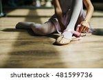 ballerina ballet dance practice ...   Shutterstock . vector #481599736