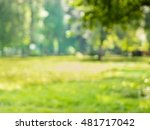 blur green leaves with bokeh as ... | Shutterstock . vector #481717042