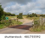 Cattle Grid And