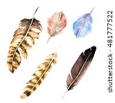 watercolor realistic feathers. | Shutterstock . vector #481777522