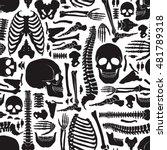 monochrome human skeleton... | Shutterstock .eps vector #481789318