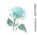 Watercolor Hortensia Flower ...