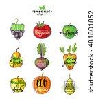 hand lettering logo of... | Shutterstock .eps vector #481801852