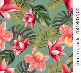 seamless tropical flower  plant ... | Shutterstock . vector #481809502
