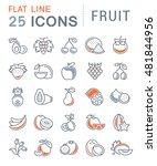 set vector line icons in flat... | Shutterstock .eps vector #481844956