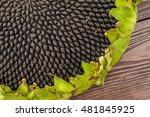 Sunflower On Wooden Table