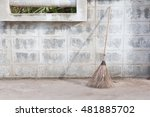 broom and coconut palms grass...   Shutterstock . vector #481885702