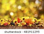 Autumn Decoration Arranged Wit...