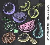 multicolored hand drawn... | Shutterstock .eps vector #481981108