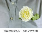 close up white rose in the... | Shutterstock . vector #481999528