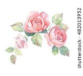 Floral Branch 1. Watercolor...