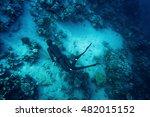freediver in wetsuit neoprene... | Shutterstock . vector #482015152