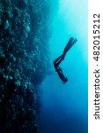 freediver in wetsuit neoprene... | Shutterstock . vector #482015212