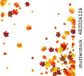 abstract autumnal background... | Shutterstock .eps vector #482026126