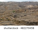 Small photo of Completely denuded and barren hillsides in Manabi province on the Pacific coast of Ecuador. The results of slash and burn agriculture in tropical dry forest.