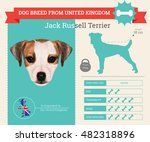jack russell terrier dog breed... | Shutterstock .eps vector #482318896