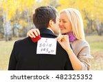 love  relationships  engagement ... | Shutterstock . vector #482325352