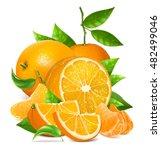 fresh ripe oranges and... | Shutterstock .eps vector #482499046