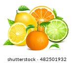 fresh citrus fruits with leaves.... | Shutterstock .eps vector #482501932