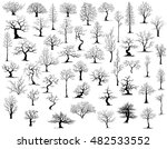 Stock vector tree on white background 482533552