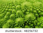 Romanesque Broccoli Macro