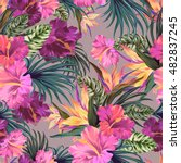 vector seamless floral pattern... | Shutterstock .eps vector #482837245