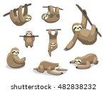 sloth poses cartoon vector...   Shutterstock .eps vector #482838232