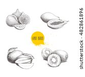 hand drawn exotic fruits set.... | Shutterstock .eps vector #482861896
