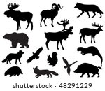 animal | Shutterstock .eps vector #48291229