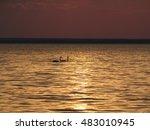 swans on the evening walk | Shutterstock . vector #483010945