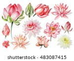 Watercolor Set With Lotus...