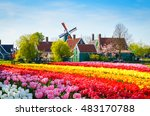 landscape with tulips ... | Shutterstock . vector #483170788