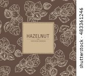 background with with hazelnut.... | Shutterstock .eps vector #483361246