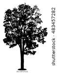 tree of vector  silhouette tree ... | Shutterstock .eps vector #483457282