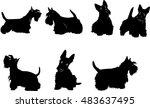 dog  sketch  terrier | Shutterstock .eps vector #483637495