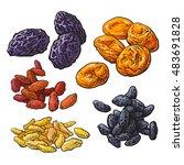set of dried fruits   prunes ... | Shutterstock .eps vector #483691828