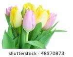 Beautiful tulip bouquet isolated on white background - stock photo