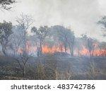 chivhu zimbabwe september 1...   Shutterstock . vector #483742786