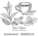 green black herbal tea plant ... | Shutterstock .eps vector #483830122