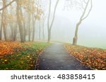 Autumn park alley in dense fog- foggy autumn landscape of lonely alley with bare trees and orange fallen leaves - stock photo