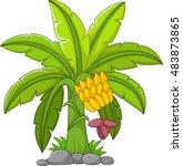 banana tree on a white... | Shutterstock .eps vector #483873865