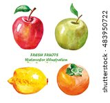 watercolor apple  lemon ... | Shutterstock . vector #483950722