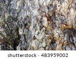 tree bark texture background | Shutterstock . vector #483959002