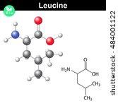 leucine essential amino acid... | Shutterstock . vector #484001122