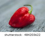 Small photo of Carolina Reaper or HP22B Cilli Pepper is the world's hottest pepper.