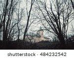 forest   Shutterstock . vector #484232542