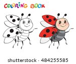 coloring book or page with...   Shutterstock .eps vector #484255585