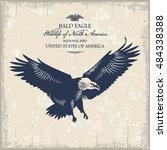 Eagle  Wildlife Of Usa ...
