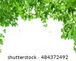 photos look up to the top ... | Shutterstock . vector #484372492